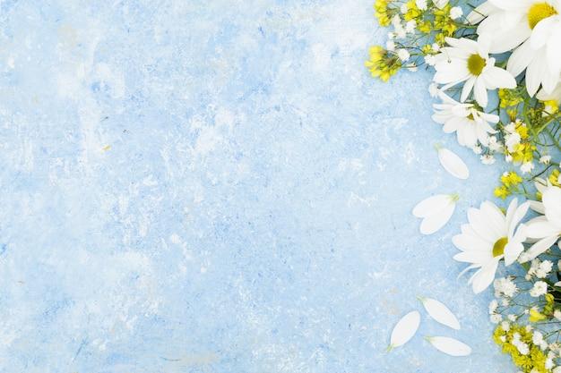 Marco floral plano laico con fondo de estuco