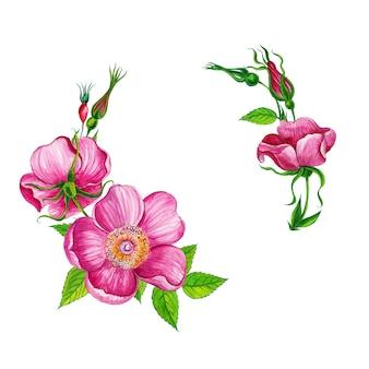 Marco de flores de acuarela