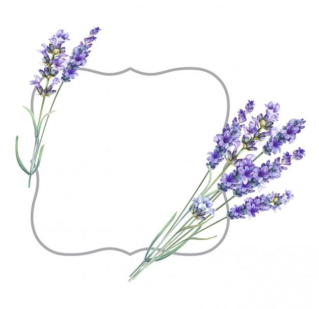 Marco de flores aromáticas