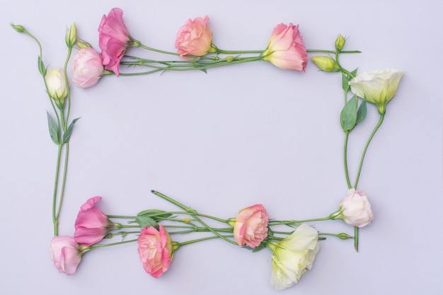 Marco de flores de eustoma blanco y rosa