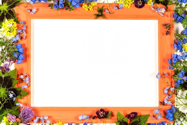 Marco de flores con hoja de papel