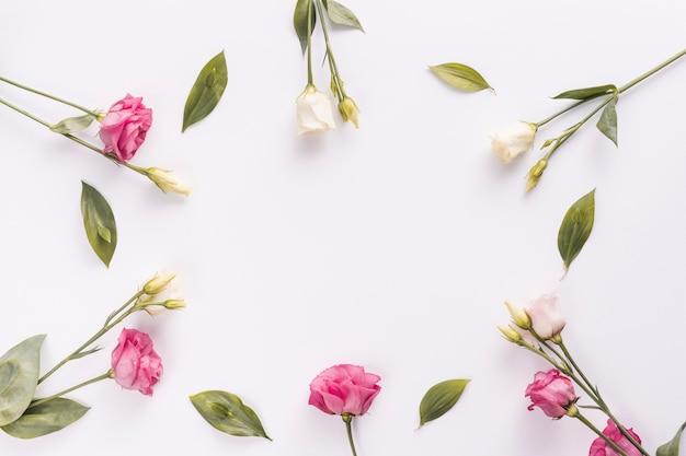 Marco de flores y hojas de rosa