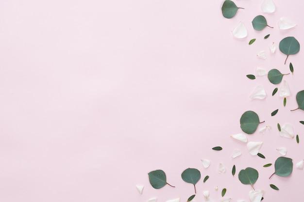 Marco de flores y hojas sobre fondo rosa, vista plana, vista superior