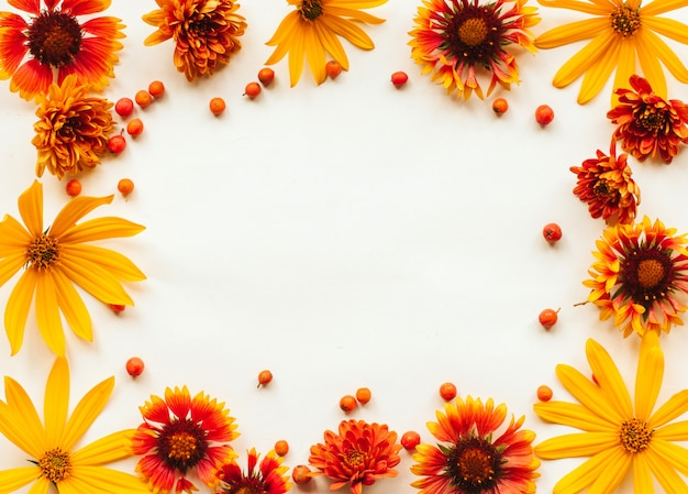 Marco de flores de otoño naranja, amarillo y rojo y bayas de serbal en blanco con lugar para el texto. otoño