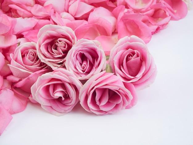 Marco de flores de rosas rosadas