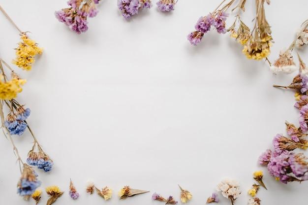 Marco de flores secas de colores sobre una superficie blanca