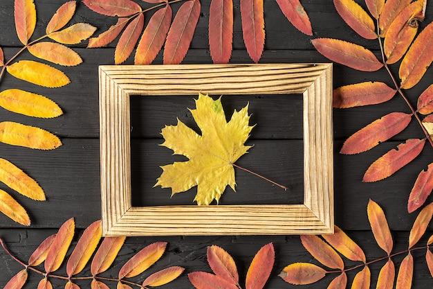 Marco de fotos y coloridas hojas de otoño