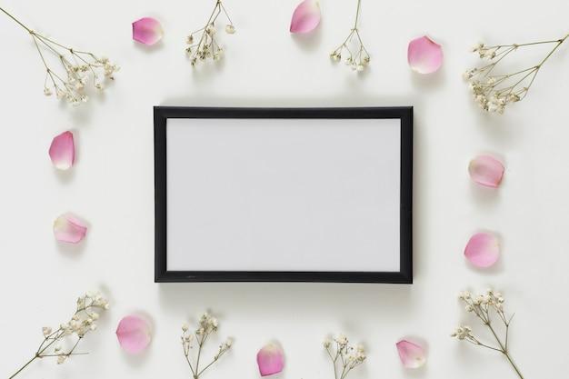 Marco de fotos entre set de pétalos de rosa frescos y ramitas de plantas.