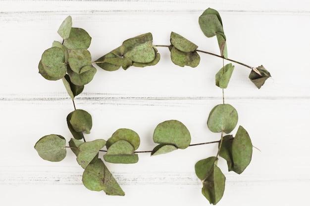 Marco hecho con hojas secas sobre fondo blanco de madera