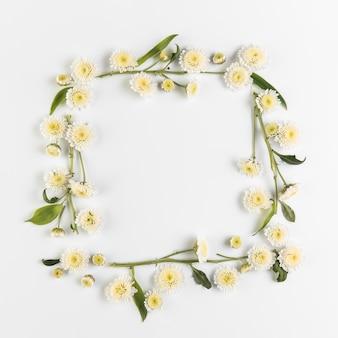 Marco hecho con flores de crisantemo y ramita sobre fondo blanco
