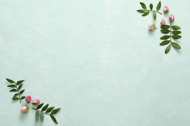 Marco hecho marco flores color de rosa y hojas sobre fondo verde