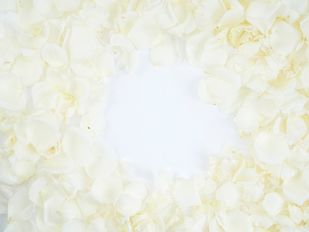 Marco hecho de pétalos de rosa blanca