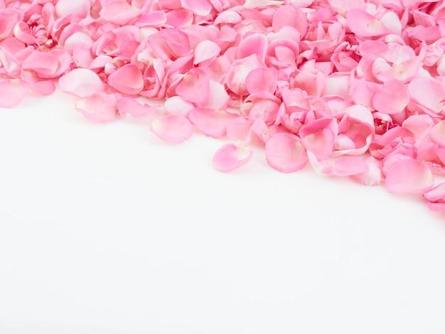 Marco hecho de pétalos de rosa rosa