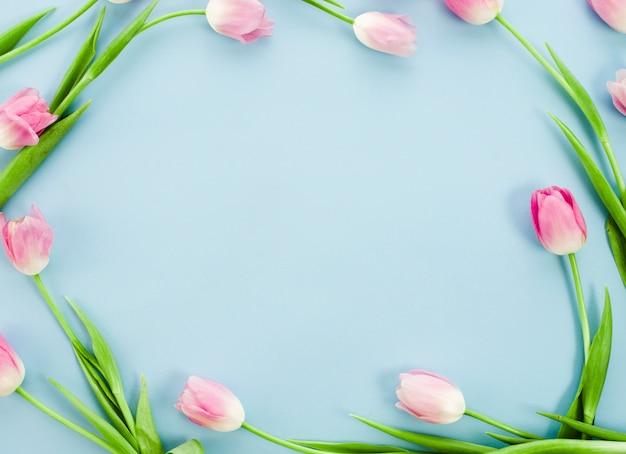 Marco hecho de tulipanes en mesa azul