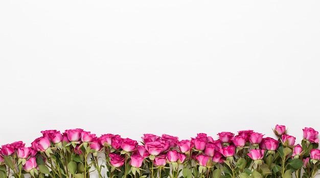 Marco de hermosas flores