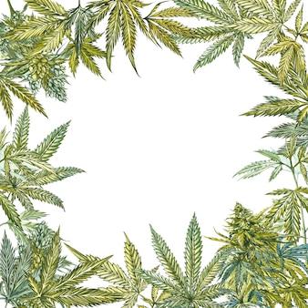 Marco de hojas de cannabis