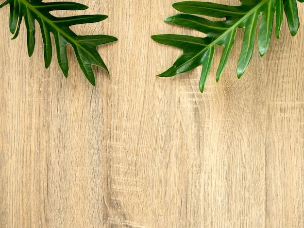 Marco de hojas trópico verde con espacio de copia en madera