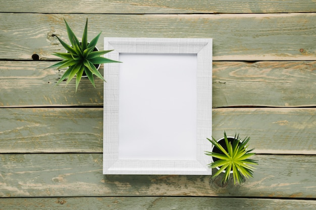 Marco minimalista blanco rodeado de plantas.