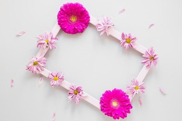 Marco minimalista con flores de gerbera y pétalos.