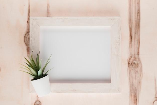 Marco minimalista plano con planta.