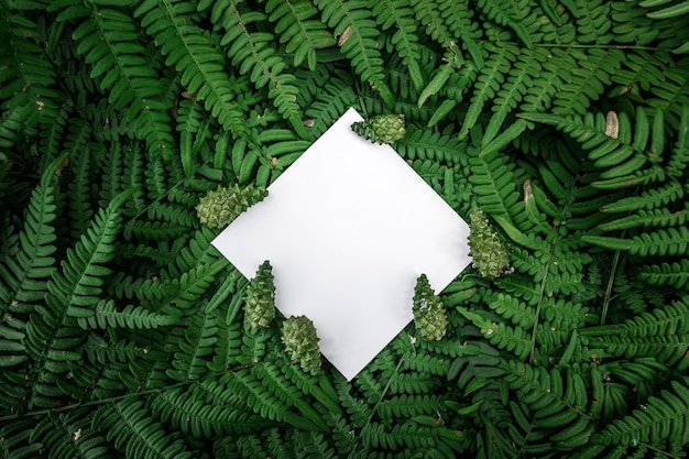 Marco de papel de rombo sobre un fondo floral verde