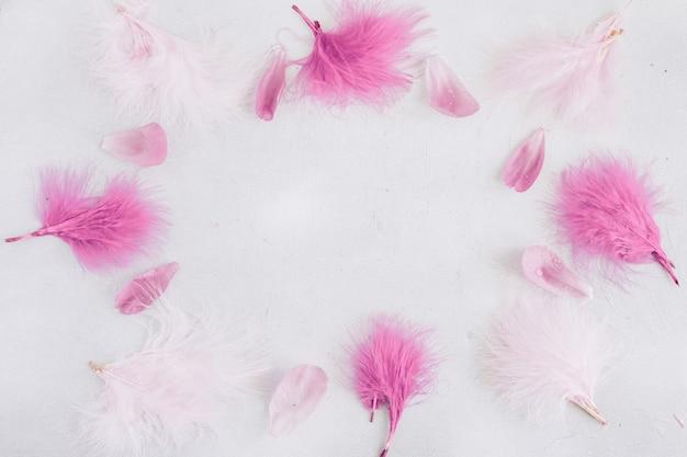 Marco pastel suave con plumas y pétalos de flores.