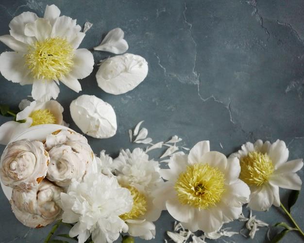 Marco de peonías blancas y pasteles de merengue de vainilla sobre fondo azul boda delicada