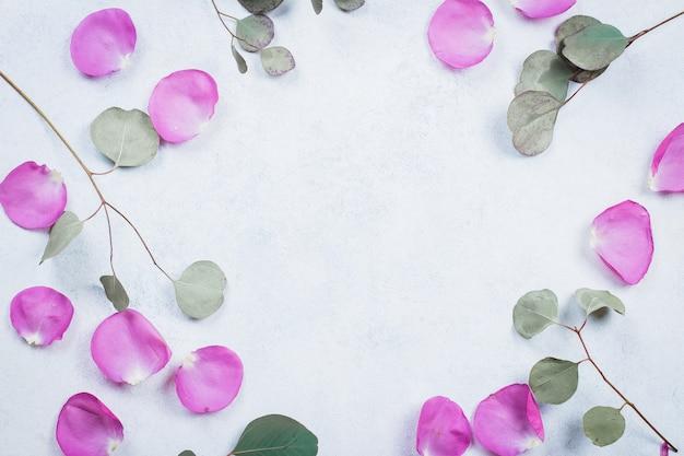 Marco de pétalos de rosa y ramas de eucalipto.