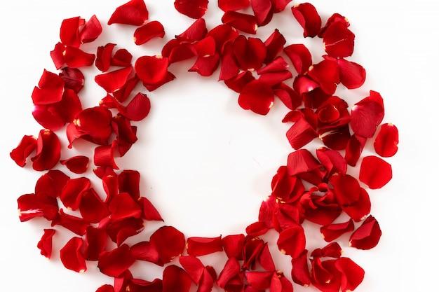 Marco de pétalos de rosa roja sobre fondo blanco.