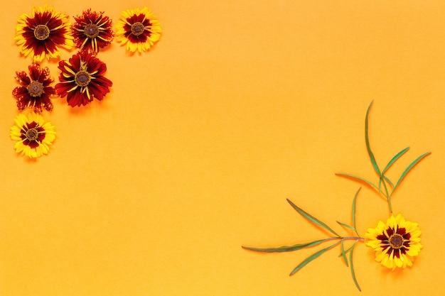 Marco rojo amarillo de la esquina de la flor en fondo anaranjado.