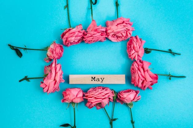 Marco de rosas frescas con texto de mayo sobre fondo coloreado