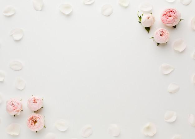 Marco de rosas y pétalos con espacio de copia