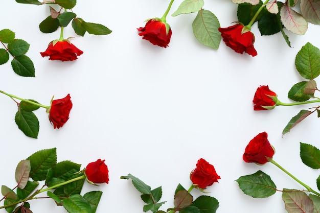 Marco de rosas rojas sobre un fondo blanco, espacio de copia.