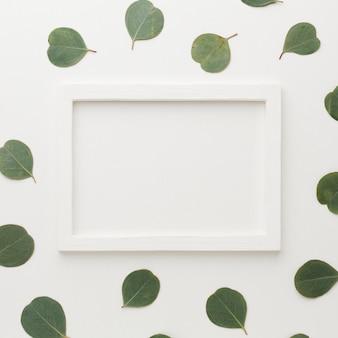 Marco vacío blanco rodeado de hojas