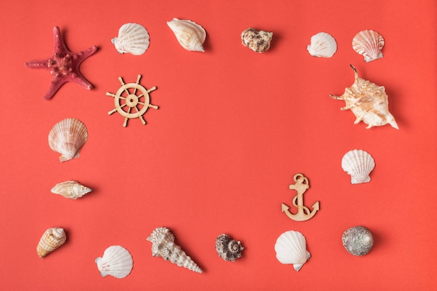 Marco de variedad de conchas marinas en el fondo de coral vivo. endecha plana. concepto marino
