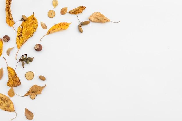 Marco de vista superior con hojas y espacio de copia