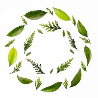 Marco de vista superior con hojas verdes