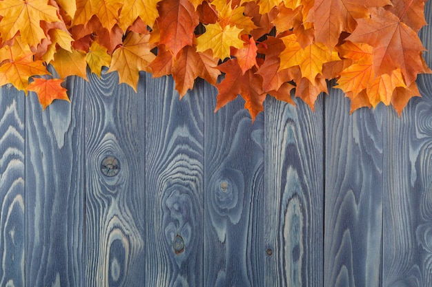 Marco de vívidas coloridas hojas de otoño en el escritorio cian de madera grunge, fondo estacional vintage