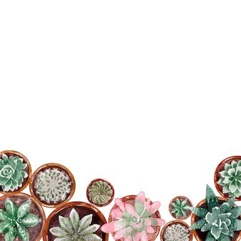 Marcos de acuarela y conjuntos de cactus de primavera