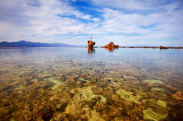 Marea baja en el parque nacional de nabq.