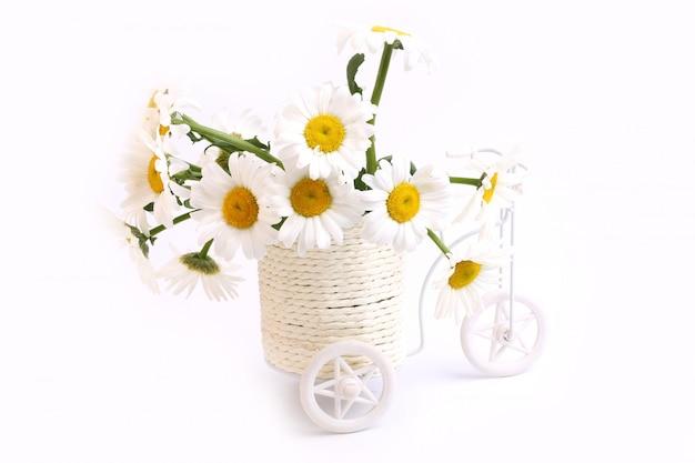 Margarita flores macetas bicicleta primavera amor tierno día de la madre fondo blanco