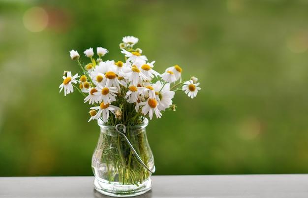 Margaritas en florero sobre la mesa verde de la naturaleza. flores de primavera