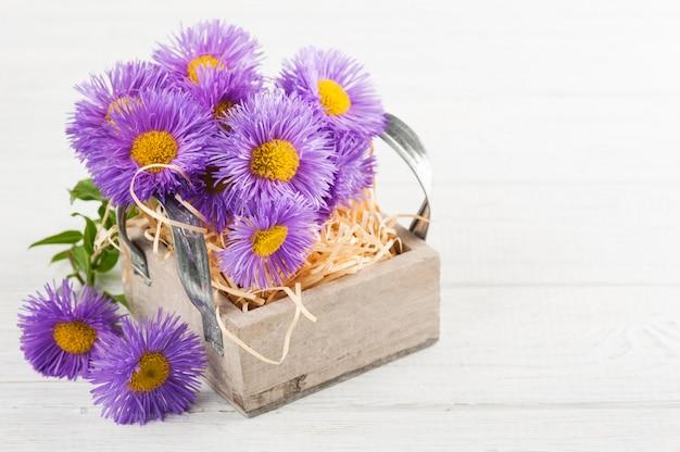 Margaritas moradas en caja vela en mesa blanca
