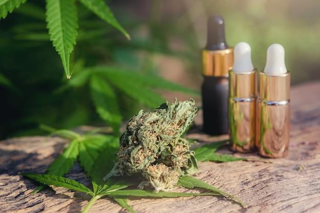 Marihuana medicinal en mesa de madera con extracto de aceite esencial, capullos y hojas.