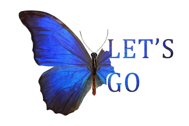 Mariposa tropical azul con una inscripción del ala, vamos