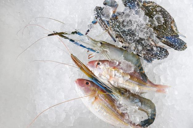 Mariscos crudos frescos sobre hielo