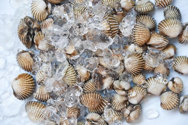 Mariscos crudos frescos