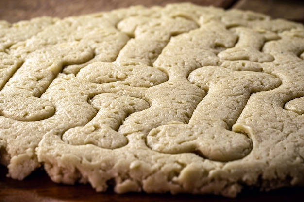 Masa de comida para perros cruda, galletas para mascotas que se cocinan en casa