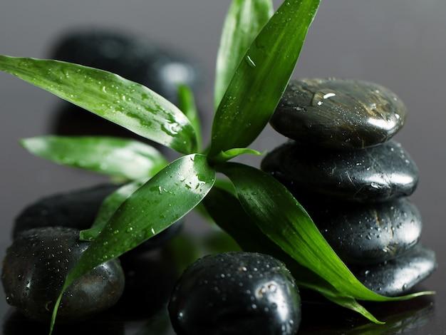 Masaje de piedras y hojas de bambú