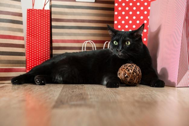 Mascota del gato negro que miente cerca de las bolsas de papel rojas de las compras